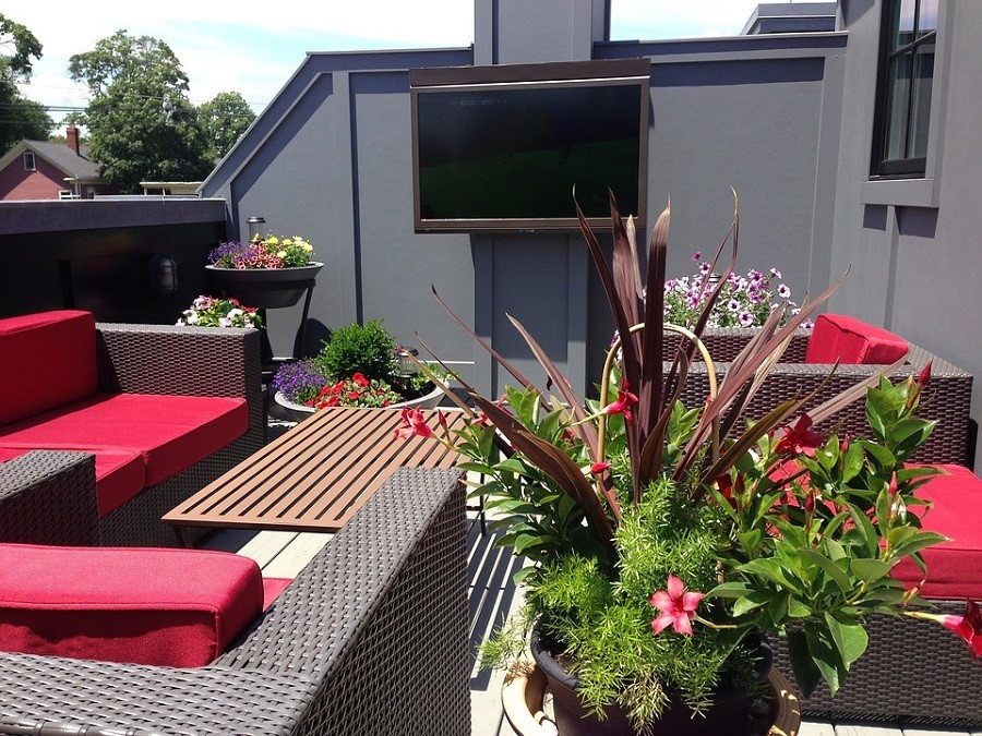 Which Outdoor TV is Best for Your Backyard Entertainment?